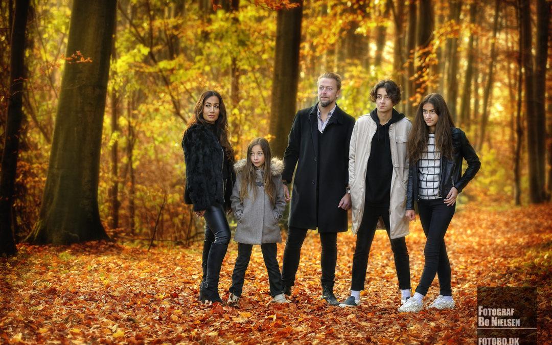Familie fotografering i skov, fotograferet af Fotograf Bo Nielsen